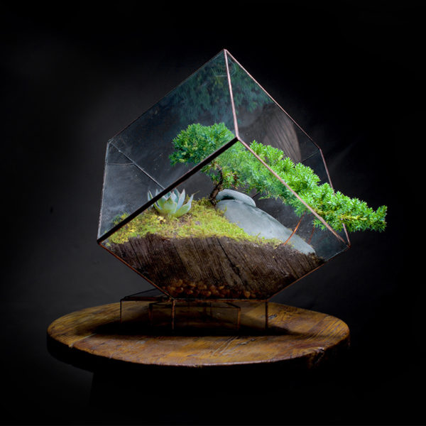 Cube-Terrarium-Angles+Earth