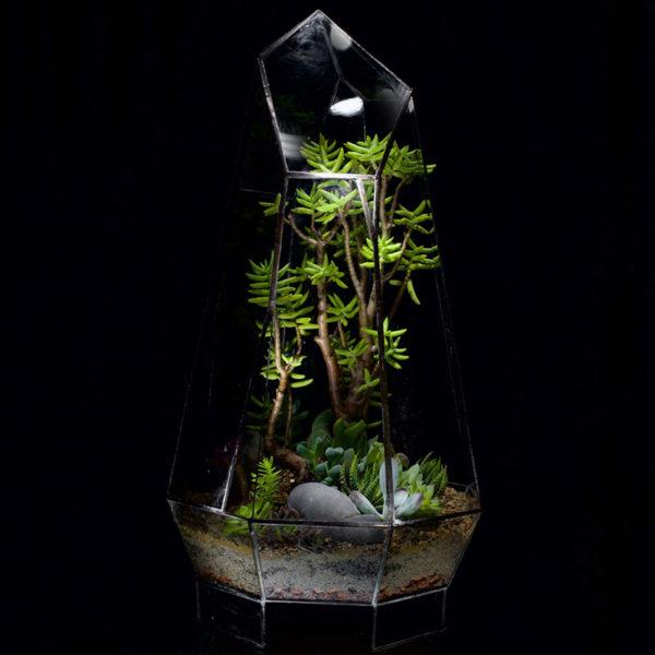 Crystal-Terrarium-Succulents
