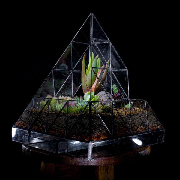 Pyramid-Terrarium