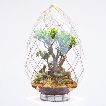 Briolette Terrarium